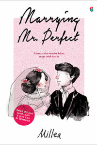 marrying mr perfect